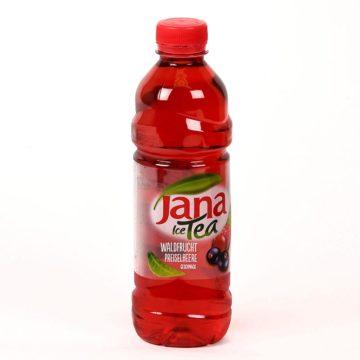 Jana Ice Tea Waldfrucht